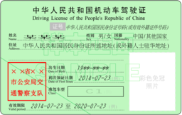 中國駕照在線翻譯